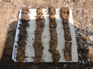 土質サンプル採取
