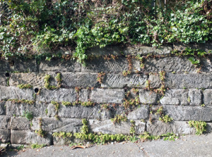 房州石のブラフ積み