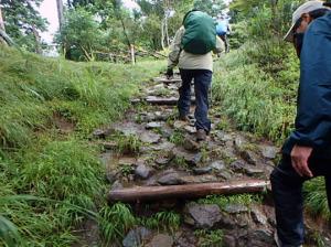 雨の大山歩き