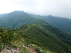 仙ノ倉山への稜線
