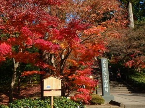 北鎌倉・円覚寺の紅葉