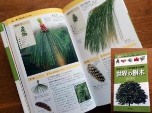世界の樹木 trees