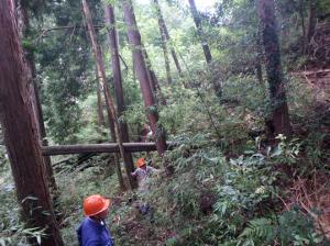 森林作業フィールド