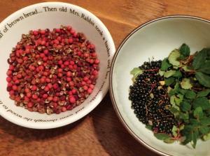 山椒の紅い実